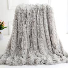 跨境外貿毛毯雙層毯長毛絨PV絨禮品毯裝飾毯背景毯秋冬毯子