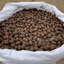 轻质陶粒花卉多肉小碳球铺面垫底石建筑回填 园艺8-12mm陶粒中号