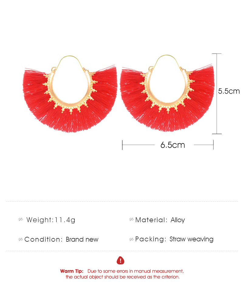 Creative fan-shaped ethnic style exaggerated tassel earrings NHDP150113