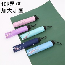 晴雨两用黑胶伞十骨加大双人太阳伞防晒防紫外线清新腊梅雨伞