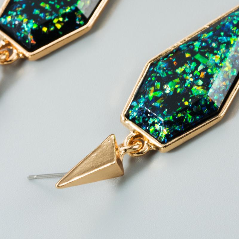 Earrings Women's Irregular Geometric Earrings NHLN173951