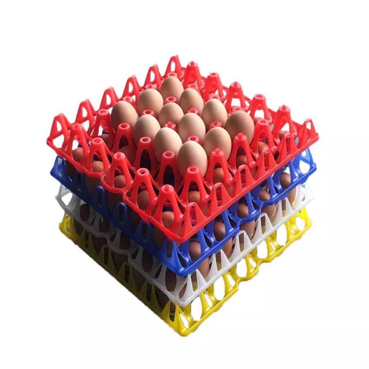 塑料鸡蛋托