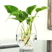 特大号玻璃花瓶水培植物富贵竹绿箩透明创意花瓶简约小清新插花瓶