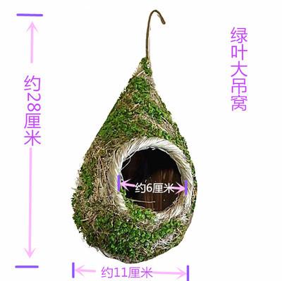 Green leaf hanging