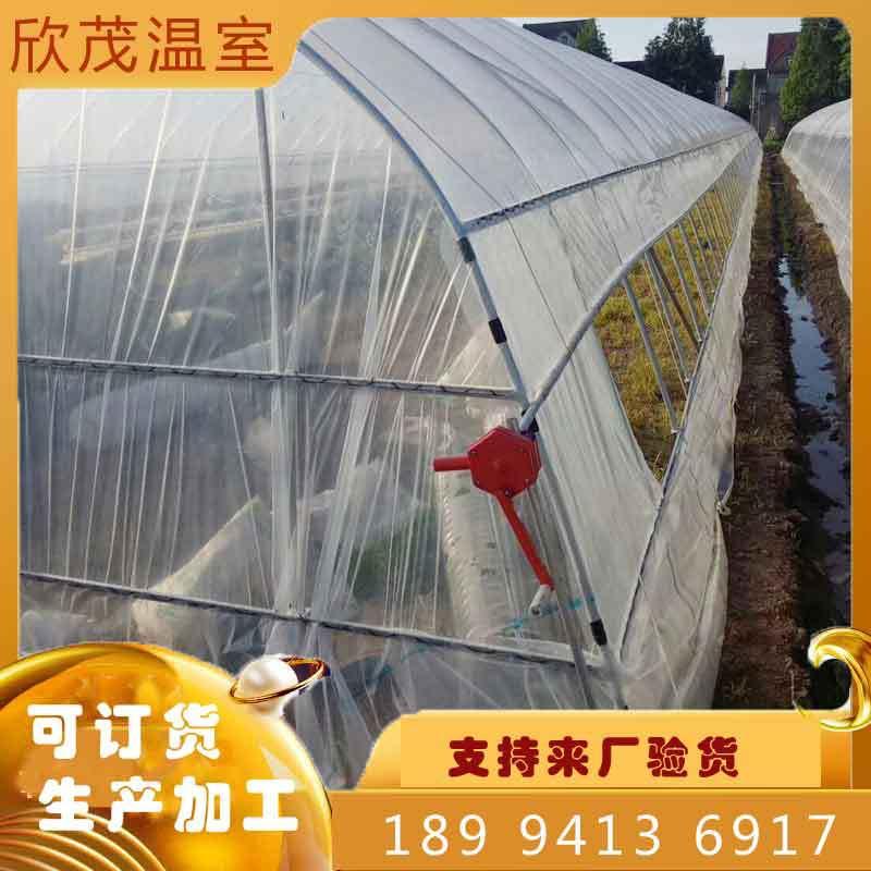 草莓大棚 草莓温室大棚造价 钢架大棚  低价批发