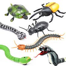 一件代發 新奇特仿真遙控動物 紅外線電動整蠱遙控蛇遙控昆蟲玩具