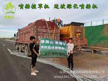 云南楚雄南华县 治理高速道路 大功率125喷播机