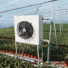 畜牧养殖加热水暖风机 保暖制热通风机 大棚暖风机设备