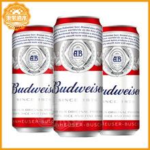 百威啤酒500ml*18罐 聽裝啤酒