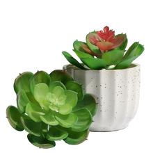 仿真多肉植物 小宝莲 绿植装饰盆景盆栽 小摆件装塑胶花厂家批发