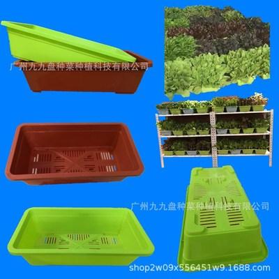 盆栽蔬菜盘无土阳台种菜盘