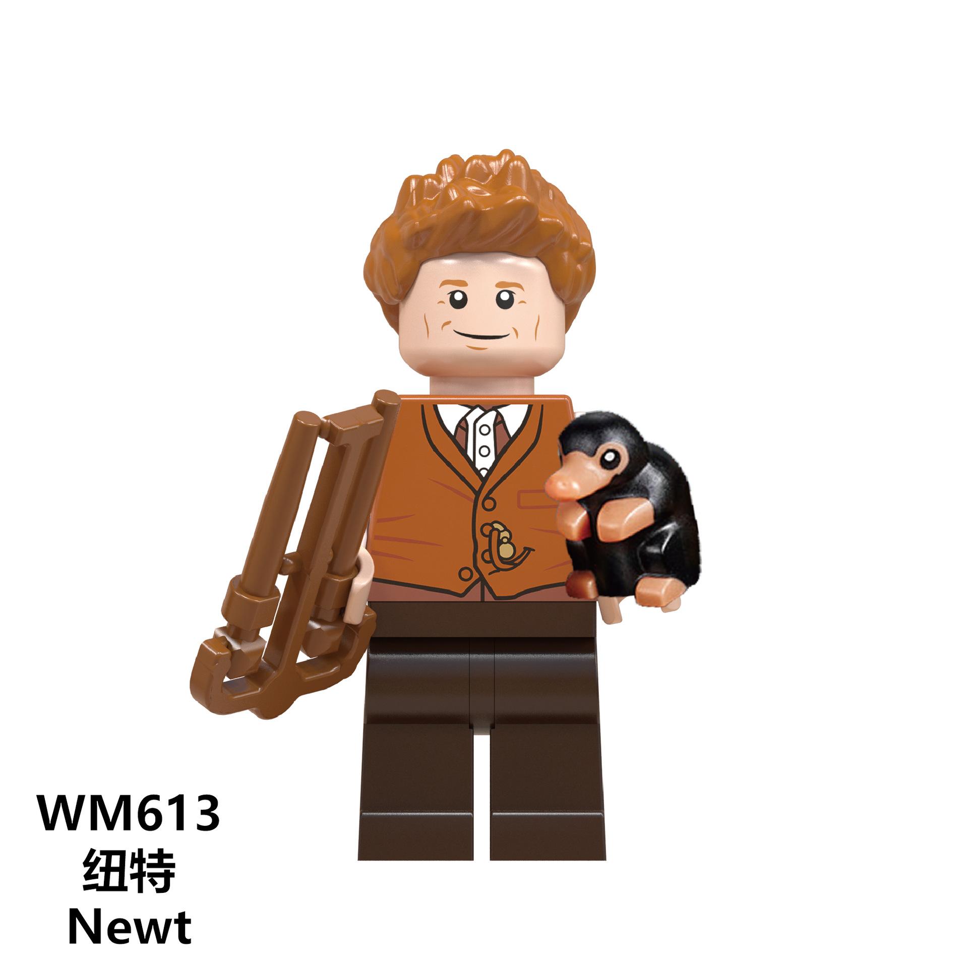 WM613