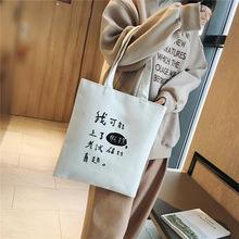 新款韩版时尚简约帆布购物袋潮包休闲百搭手提包单肩女包一件代发