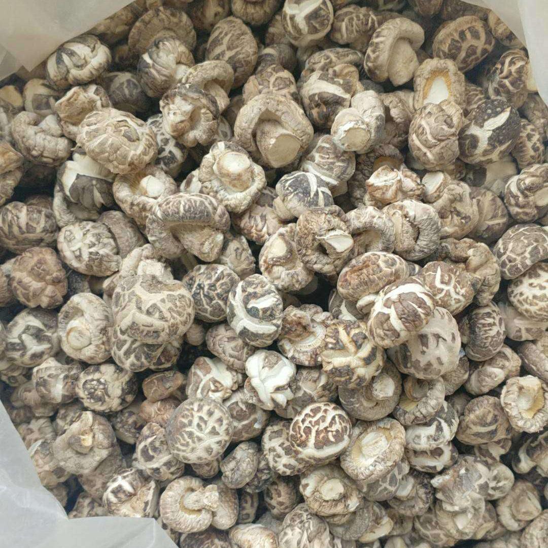 【勃朗特】珍珠白花菇茶花菇香菇花菇干货 批发湖北随州产地直发