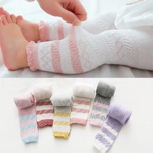 春秋宝宝新款棉质儿童连裤袜透气无骨中小童婴儿宝宝防蚊袜子批发