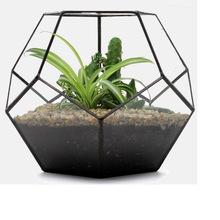 淘宝货源大号创意玻璃花房养微景观花盆容器新型多肉植物盆景容器