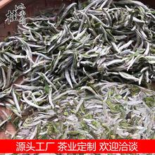 福鼎的白茶牡丹王 白牡丹白茶饼白毫银针散茶 老白茶批发厂家直销