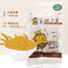 晋皇羊肥小米200克 有机黄小黄米 小米粥 新米农家小米杂粮月子米