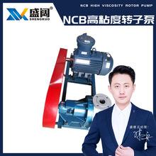 供应 高粘度转子泵NCB-30m?/h糖浆泵内环式铸铁电动保温转子泵