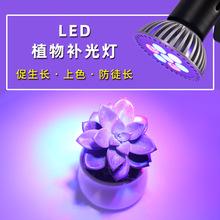 植物生長燈 7W  植物PAR燈 LED植物燈 LED植物補光燈 大棚補光燈