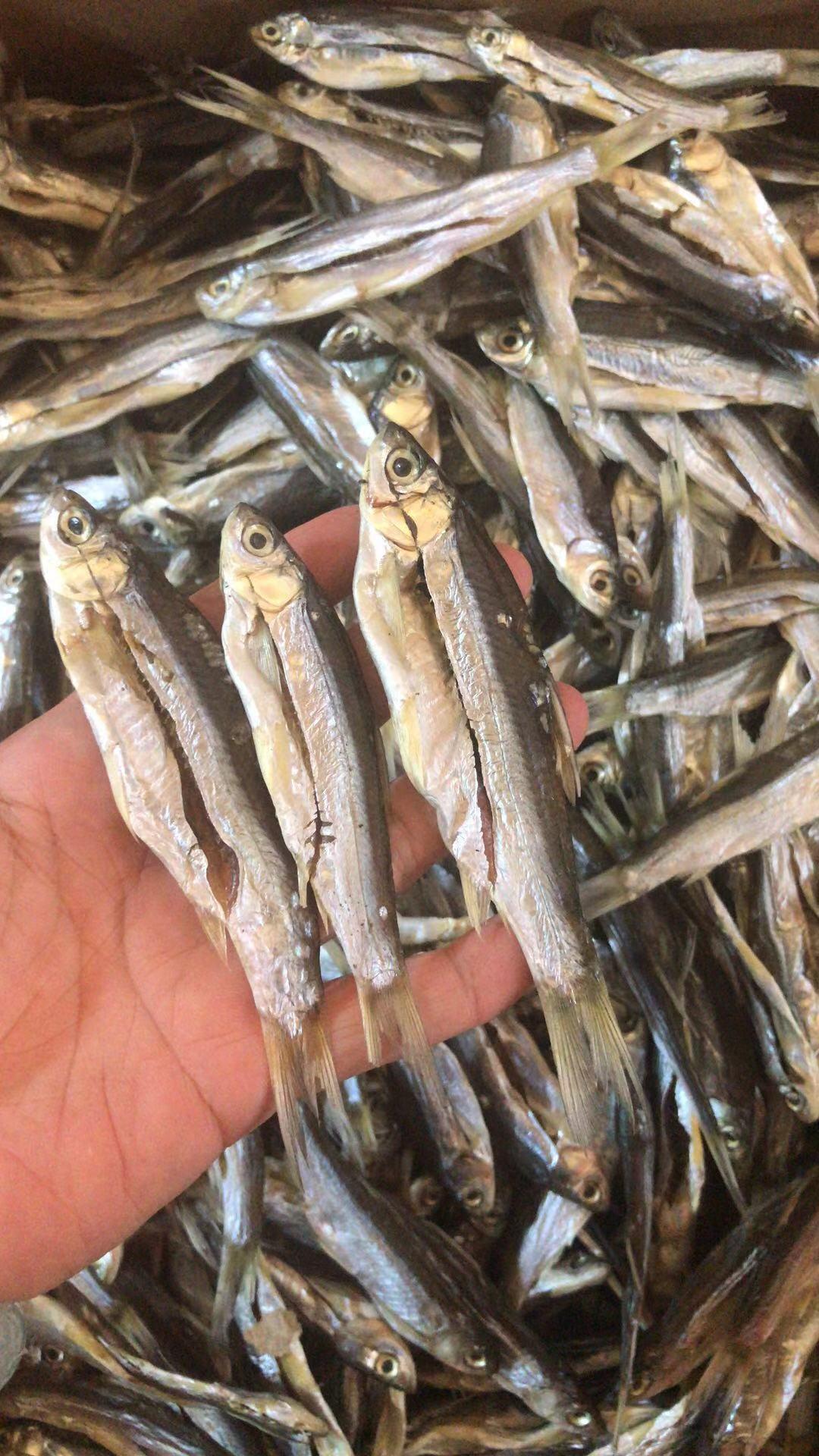 白条鱼刁子鱼餐鱼干腊鱼干咸鱼干鄱阳湖特产小干鱼
