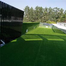 绿植墙仿真植物墙装饰草坪室内背景形象壁挂花墙面塑料室外假草皮