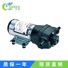 供应DP直流隔膜泵 DP-35微型电动自吸泵 12V/24V高压水泵
