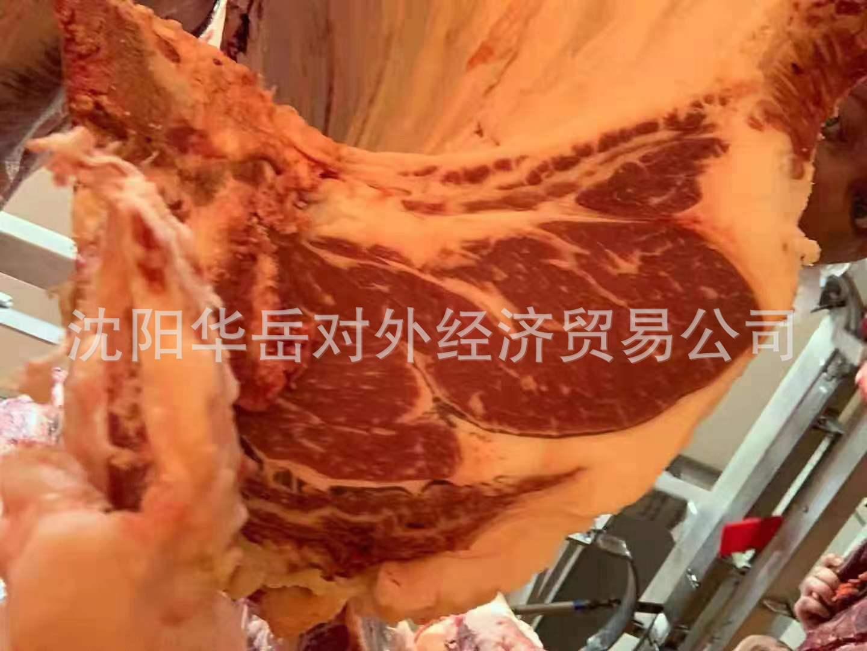 澳洲进口和牛 正关进口 品质保证