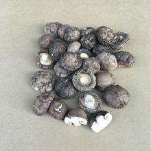金钱小香菇根短肉厚产地直批冬菇500g散装批发香菇干香菇香菇干