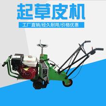 新品上市厂家直销植保园林机械发动机快速双轮起草皮机工作效率高