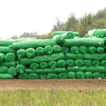 盖土网 建筑工地6针3针绿色防尘网聚酯遮土网厂家 聚乙烯盖土网