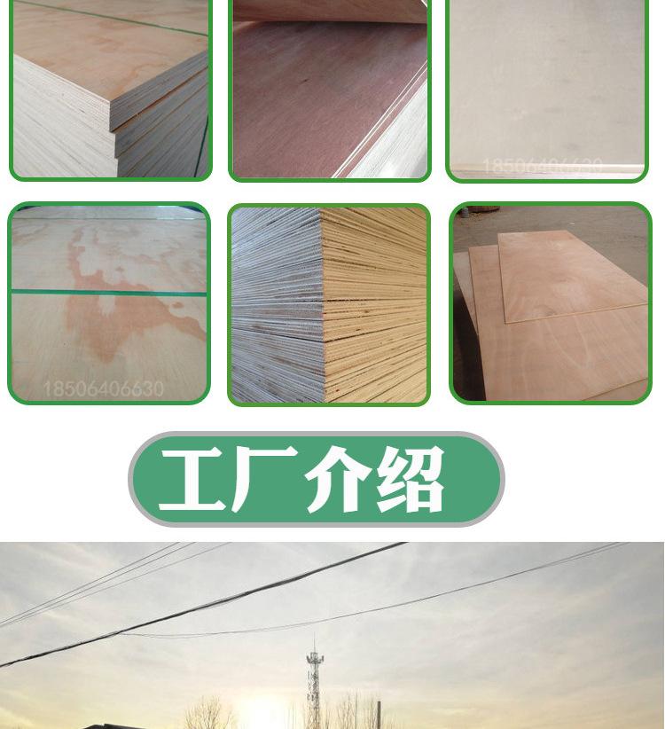 厂家批发 原色杨木胶合板 汽车配件包装用胶合板 河北唐山
