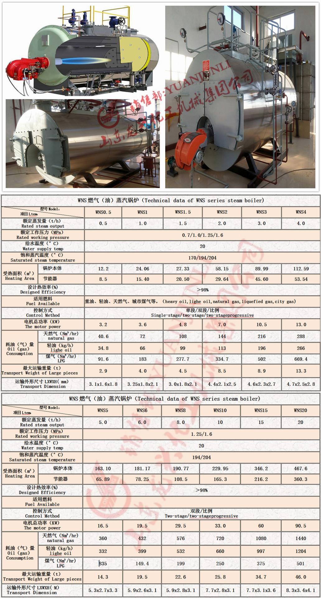 燃气蒸汽锅炉技术参数表个.jpg