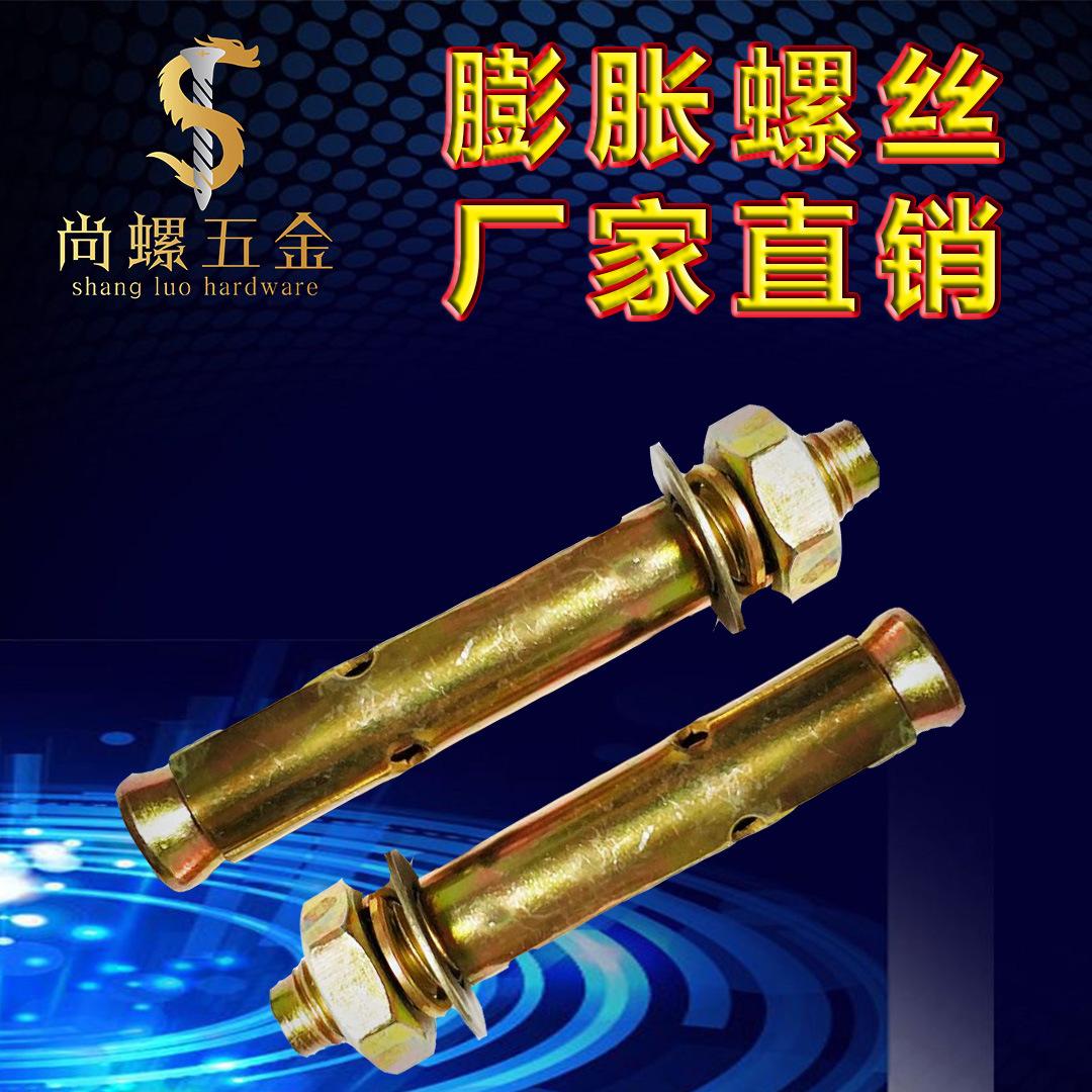 厂家直销 镀彩锌拉爆螺丝M10*80 国标带孔膨胀螺丝 批发销售螺栓