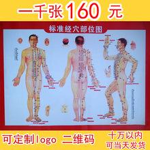 Cuốn sách trị liệu moxib phỏng tiêu chuẩn uốn nắn xoa bóp độ nét cao moxib phỏng cơ thể Moxib phỏng