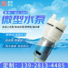 现货供应美熊3V12V24V电动微型隔膜泵 直流自吸水泵 空气泵可定制