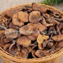 新貨野生東北特產榛蘑干貨250克無根蘑菇不好包退包郵一件代發
