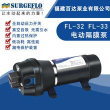 FL-32 220V微小型交流电动隔膜自吸抽水泵热水器家用增压力上水泵