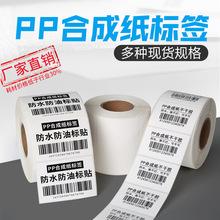 厂家定制 PP合成纸标签 防水撕不烂标签 家具石材标贴 热敏合成纸