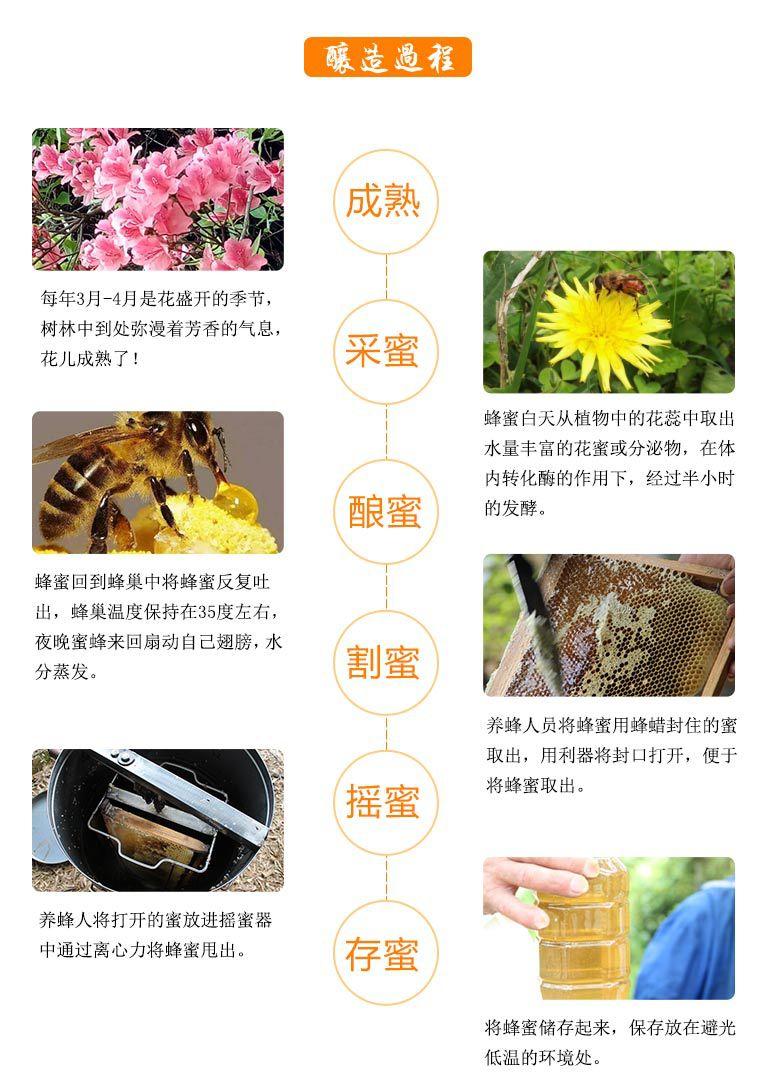 Honey 500g_16.jpg