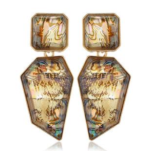 European and American exaggerated geometric resin earrings fashion earrings long earrings wholesale shell color new