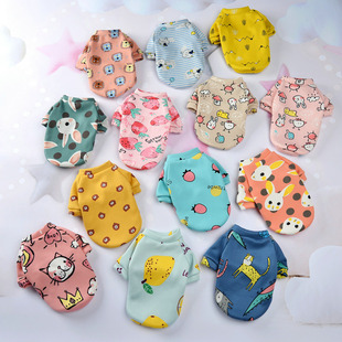 Customized new cartoon pet clothes plus velvet two-legged sweater autumn and winter hedging pet dog clothes cat clothes