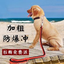 手工編織項圈八股繩P鏈 寵物牽引繩 中大型犬狗鏈狗繩廠家批發