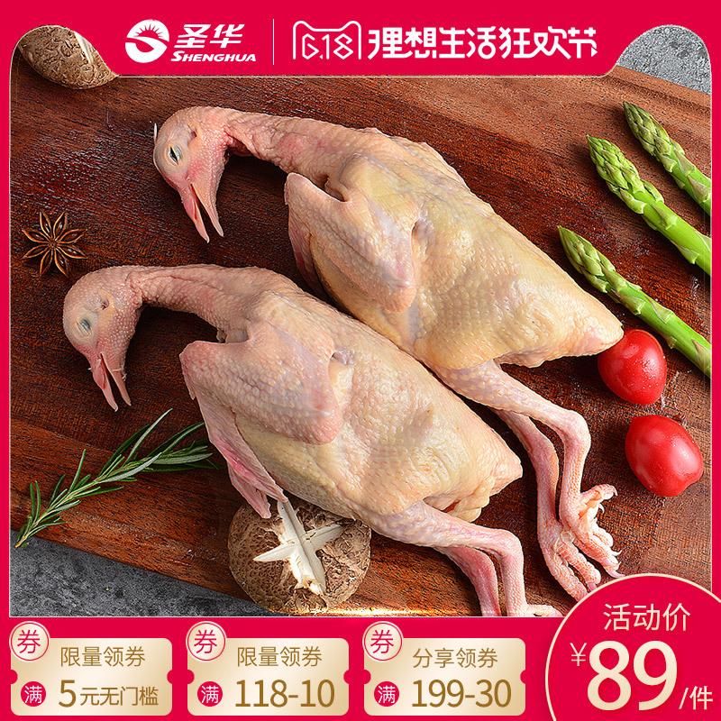 。圣華新鮮土鴿子3只農家散養乳鴿老鴿子肉燉煲湯生鮮冷凍順豐包