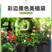跨镜植物袋grow bag种植袋黑色无纺布美植袋植树袋 生长 育苗花盆