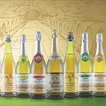 进口起泡酒 代理法国原瓶进口沃迪安无醇起泡