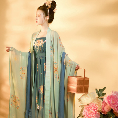 restored Han Dynasty Dress Lady embroidered chebula skirt big sleeve shirt Han Dynasty dress set embroidered Big skirt