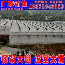温室大棚骨架 畜牧蔬菜养殖农业大棚 连栋玻璃温室大棚 樱桃大棚