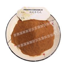 95% 刺蒺藜皂苷 刺蒺藜皂甙 刺蒺藜提取物 現貨包郵