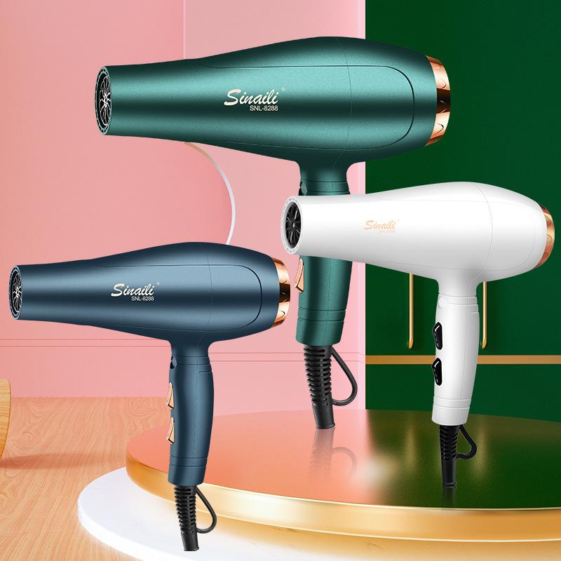 Blu-ray hair dryer high-power gifts Hot...